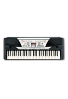 61 Keys Electronic Organ/Electronic Keyboard Instrument (EK61202)