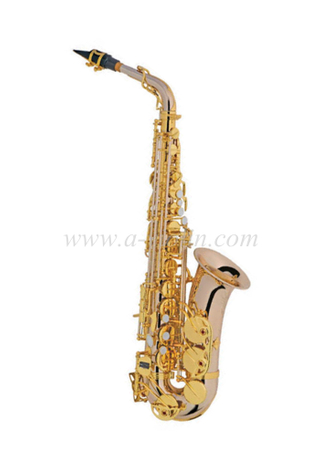 Alto Saxophone (Advanced student model)-YNG style (SP1013NS-G)
