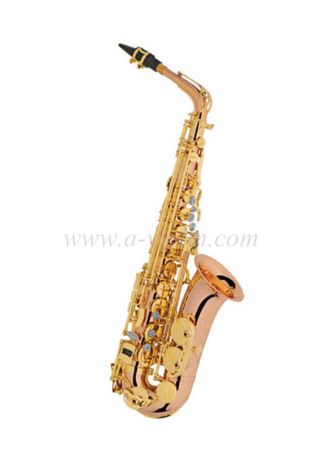 Alto Saxophone ( Advanced student model)- Y style (SP1012R-G)