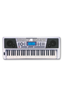 61 Keys Electronic Organ Keyboard/Musical Keyboard Instrument (EK61208)